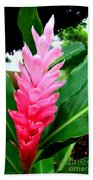 Pink Cone Ginger Beach Towel
