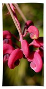Pink Curls - Flower Macro Beach Towel
