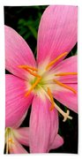 Pink Day Lily Beach Towel