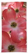 Pink Dogwood At Easter 2 Beach Towel