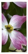 Pink Dogwood Blossom Up Close Beach Towel