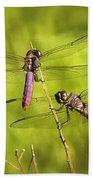Pink Dragonflies Beach Towel