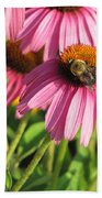 Pink Flower And Bee Beach Towel