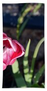 Pink Flower And Bud Beach Towel
