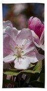 Pink Flowering Crabapple Blossoms Beach Towel
