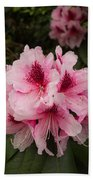 Pink Flowers In Spring Beach Towel