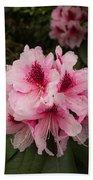 Pink Flowers In Spring Beach Sheet