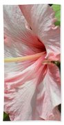 Pink Lady 2013 Beach Towel