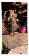 Pink Lady Cactus Beach Towel