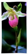 Pink Lady's Slipper Beach Towel