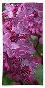 Pink Lilacs Beach Towel