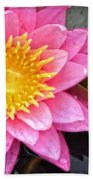 Pink Lotus Flower - Zen Art By Sharon Cummings Beach Sheet