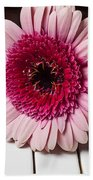 Pink Mum On Piano Keys Beach Towel