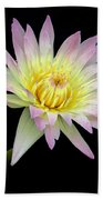 Pink N Yellow Water Lily Too Beach Towel