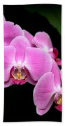 Pink Orchids In A Row Beach Towel