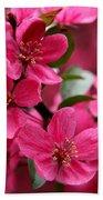 Pink Plum Blossoms Beach Towel