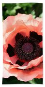 Pink Poppy Bloom Beach Towel
