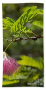 Pink Powderpuff Blossom Beach Towel
