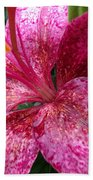 Pink Rain Speckled Lily Beach Towel