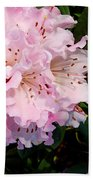 Pink Rhodies Beach Towel