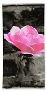 Pink Rose In Black And White Beach Towel