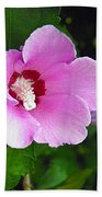 Pink Rose Of Sharon 2 Beach Towel