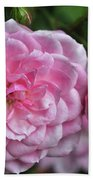Pink Rose Petals Beach Towel