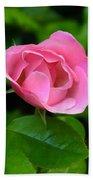 Pink Rose Volunteer Beach Towel