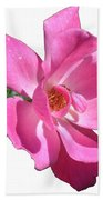 Pink Rose With Bud Beach Towel