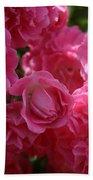 Pink Roses In Sunlight Beach Towel