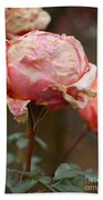 Pink Roses In The First Snow Beach Towel