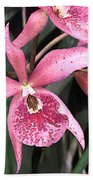 Pink Spotted Cattleya Orchids Beach Towel