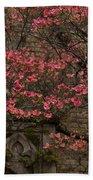 Pink Spring - Dogwood Filigree And Lace Beach Towel by Georgia Mizuleva