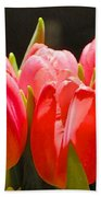 Pink Tulips In A Row Beach Towel