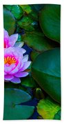 Pink Water Lilies - Lotus Beach Towel