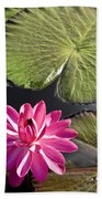 Pink Water Lily II Beach Towel