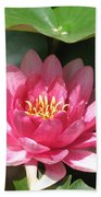 Pink Waterlily Beach Towel