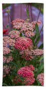 Pink Yarrow Beach Towel