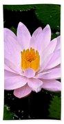 Pinkish Lotus Flower Beach Towel