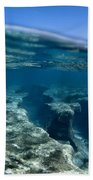 Pipe Reef. Beach Towel
