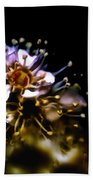 Anthers Beach Towel