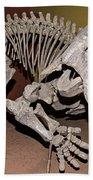Placerias Fossil Beach Towel