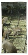 Green Monkey Play Time Beach Towel