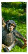 Playful Chimp Beach Towel