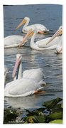 Plenty Of Pelicans Beach Towel
