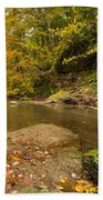 Plessey Woods And The River Blyth Beach Towel