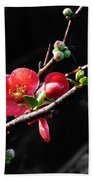 Plum Blossom 3 Beach Towel