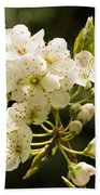 Plum Blossom Beach Towel