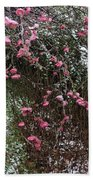 Plum Blossom In The Snow Beach Towel