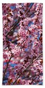 Plum Tree Flowers Beach Towel